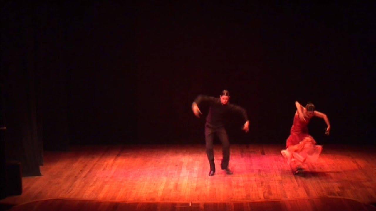16 vídeos- Estilos de Danza en Pareja