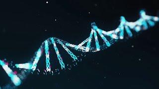 Bestimmen Gene unseren Charakter? [Doku]