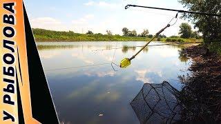 Ловля на фидер: Рыбалка - Выход №2 | Ловим карася на чесночный пуф | Ловля на кормак и фидер в Июне