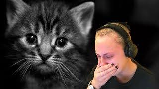 Download ЗАПЛАКАЛ? ПРОИГРАЛ! | ПOПРОБУЙ НЕ ЗАПЛАКАТЬ ЧЕЛЛЕНДЖ | TRY NOT OT CRY CHALLENGE Mp3 and Videos