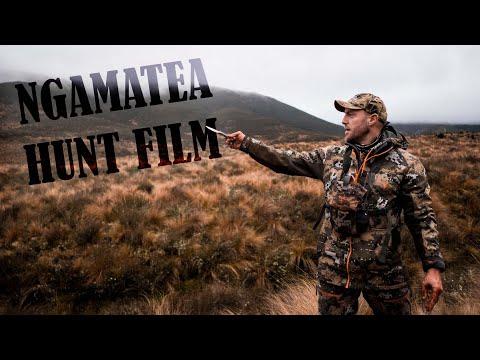 Ngamatea Hunt Film