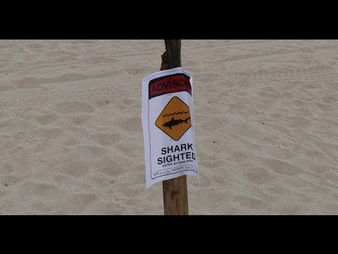 Huntington Beach (Shark Warning), CA, Surf, 5/24/2015 - (4K@30)