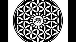 """Flower Of Life """"Mystery"""" At The Osirion In Egypt"""