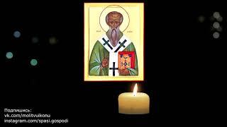 Молитва о здоровье домашнего животного священномученику Власию Севастийскому покровителю животных