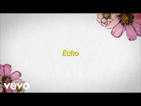 Download Maroon 5 - Echo ft. blackbear (Official Lyric Video)