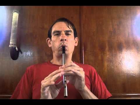 Rattlin' Bog | Tin Whistle