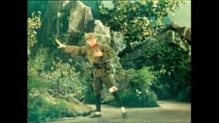 Video 《沂蒙颂》02/07  中国舞剧团  现代芭蕾舞剧  1975年 download MP3, 3GP, MP4, WEBM, AVI, FLV Juli 2018