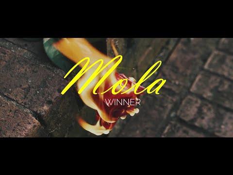 WINNER - MOLA (몰라도 너무 몰라 ) FMV