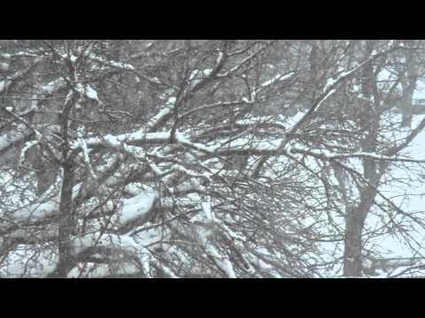 Snowfall Saint Joseph, MI
