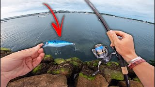 SALTWATER BANK FISHING MAYHEM! -- (This Is My NEW FAVORITE LURE!)