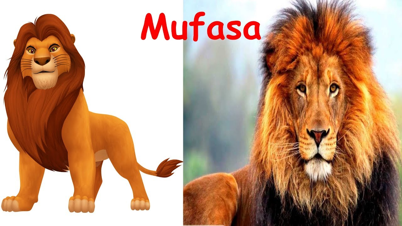 All the lion king characters