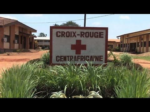 CAR: High death toll in Bangui, says Red Cross