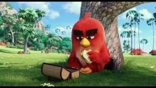 'Angry Birds в кино'  - Второй трейлер
