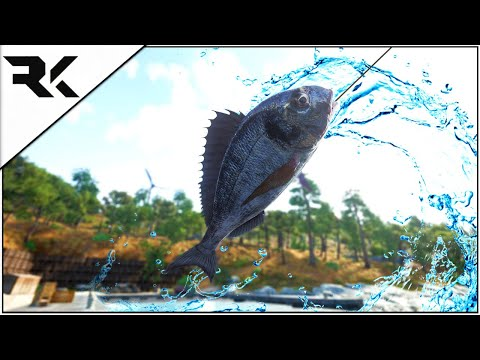 Scum 0.5 | How To Fish & What Skills You Will Need |