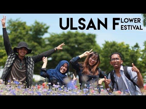 ULSAN 4K