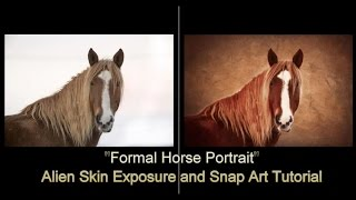 Скачать Formal Horse Portrait Alien Skin Software Tutorial