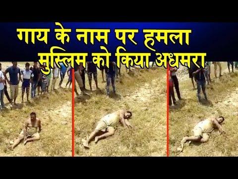 गाय के नाम पर हमला मुस्लिम को किया अधमरा/Mob lynching in hapur