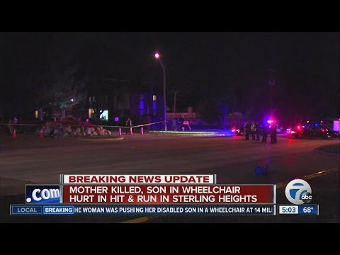 Mom killed in Sterling Heights hit & run