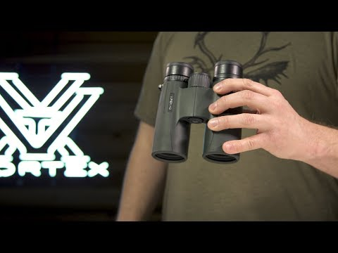 Best Binoculars For Birding - Buyer's Guide