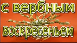 С Вербным воскресеньем Palm Sunday Поздравление с праздником вербное воскресение