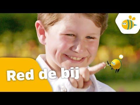 Kinderen voor Kinderen - Red de bij (Officiële videoclip)