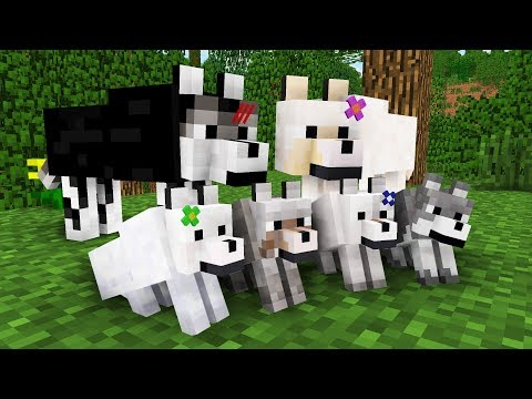 WOLF LIFE MOVIE | Cubic Minecraft Animations | All Episodes