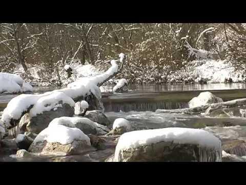 pearl river holiday track meet 2012 honda