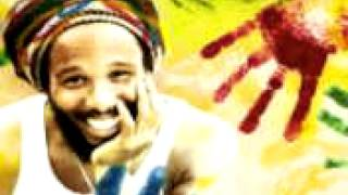 bob marley 3 Little Birds rmx Feat Sean Paul Ziggy Marley