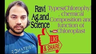 Types (Chlorophyll), Chemical …