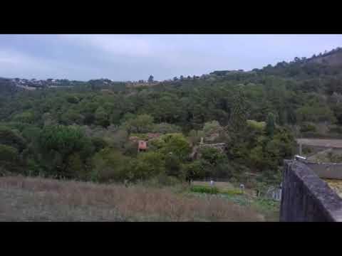 Localizan el cadáver de una joven cerca de A Valenzá