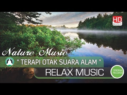 Brain Music Therapy: Natural Music Hypnotherapy Eliminate Stress, Sleep Music, Meditation & Rest