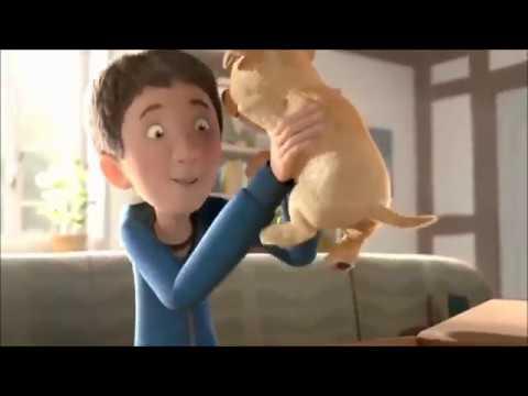 Film Motivasi Hidup dari Anjing Cacat