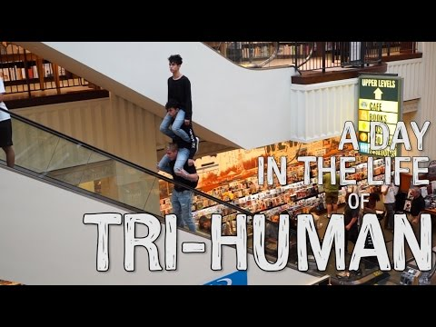 A DAY IN THE LIFE OF TRI-HUMAN