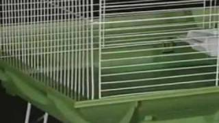 Clean Life Bird Cage Systems by Prevue Pet