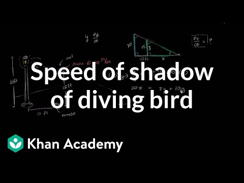 Speed of shadow of diving bird