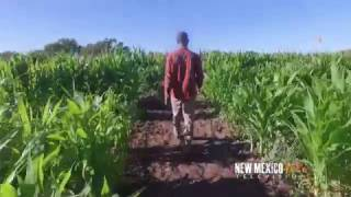 NM True TV - Wagners Farmland Experience