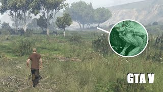 Swamp Monster FOOTAGE CAPTURED! (Biggest GTA 5 Myths Caught On Video!)