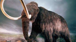 Wymarłe gatunki, które wkrótce powrócą cz.2