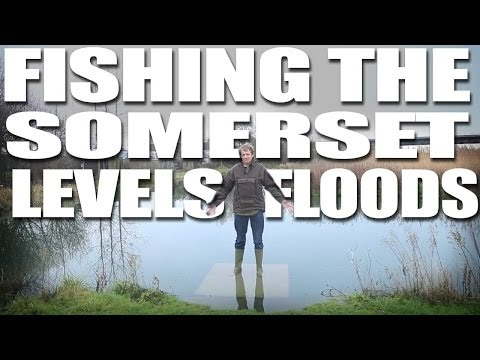 Fishing the Somerset Levels flood 2014 - Fishing Britain Shorts