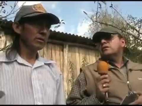 Jard n azuayo en azogues youtube for Jardin azuayo