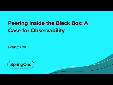 Peering Inside the Black Box: A Case for Observability