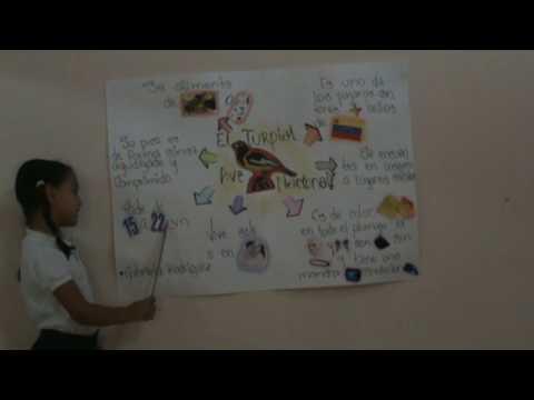 Worksheet. Turpial ave nacional venezuela  YouTube