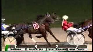 06/11/2013, Treviso , Premio Arredissima Varese C.naz.