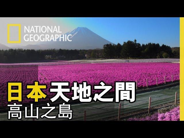 絕美空拍,讓你不用出門、不用搶票、不賭運氣也能一覽奈良櫻花的粉紅壯麗【日本-天地之間】高山之島 短片精華版