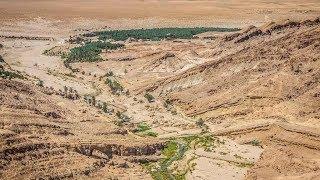 Rehabilitating Tunisian oases
