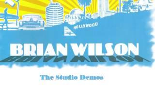 Brian WIlson - 06 Venice Beach Studio Demo