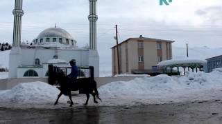 Кыргызы, живущие в селе Улуу Памир провинции Ван (Турция)