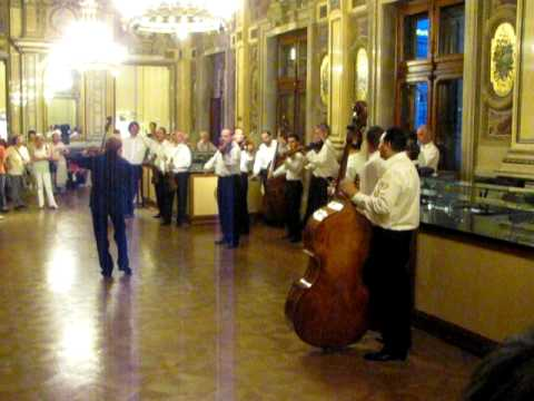 The Vienna State Opera Orchestra demonstrates an interlude from Don Giovanni
