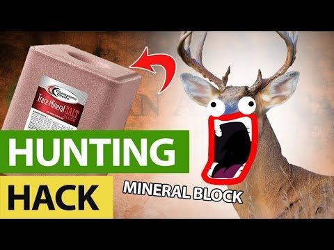 Never Buy A Mineral Block Again - Deer Season Hack