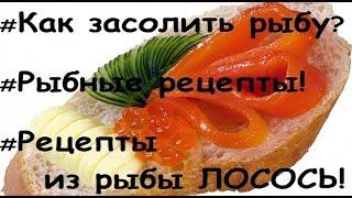Рецепты из рыбы.  Как засолить рыбу  Лосось?  Рыбные рецепты. Готовим красную рыбу